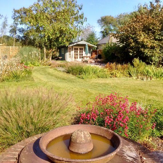 bird bath in disabled friendly garden