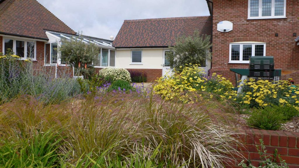 modern front garden with combination of ornamental grasses and flowering plants