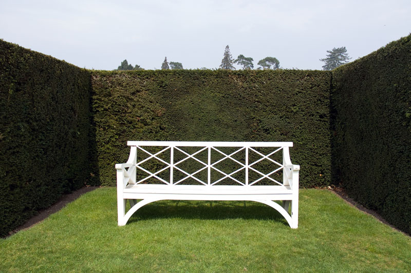 formal hedge surrounding a simple seating area