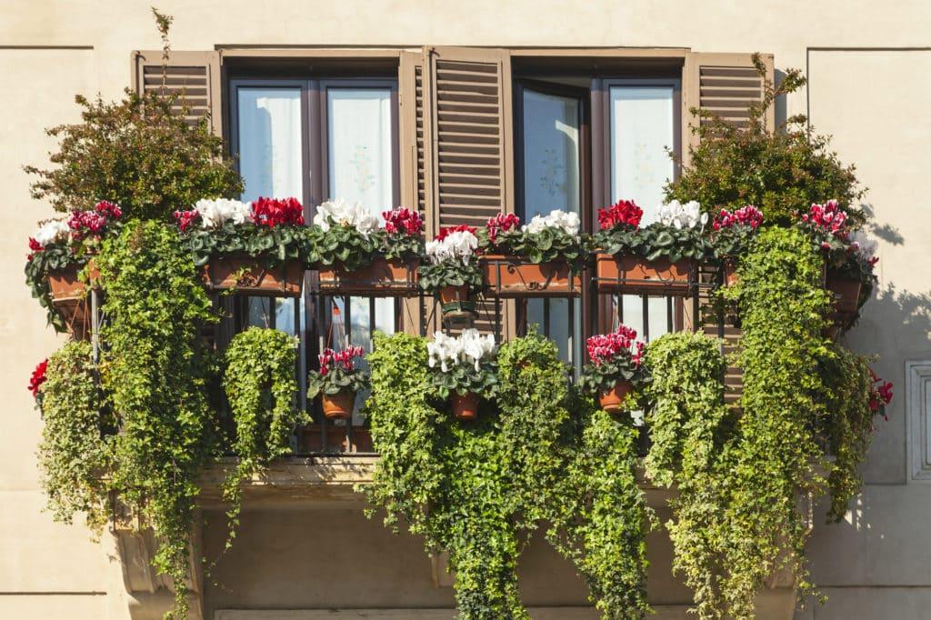 vertical garden design for balcony