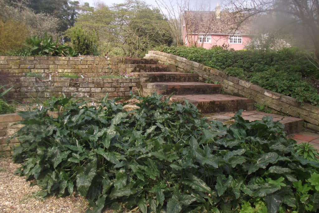 brick built garden terraces with adjoining steps