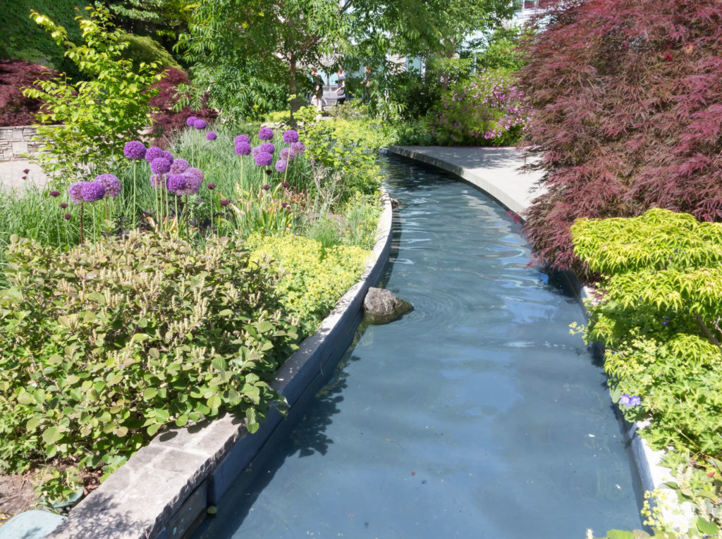 gently curving water rill with low growing plants either side of it