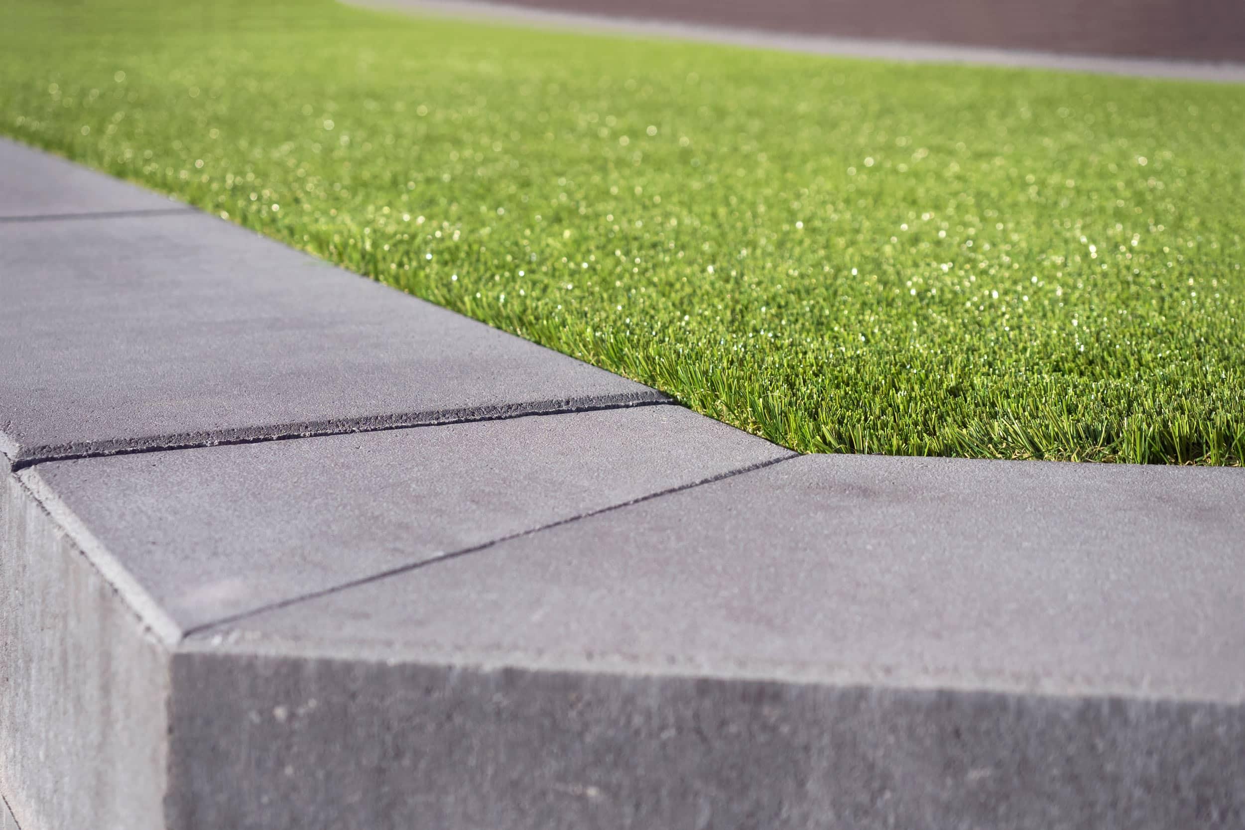 Alternative Lawns That Won T Go Brown In Summer Tds