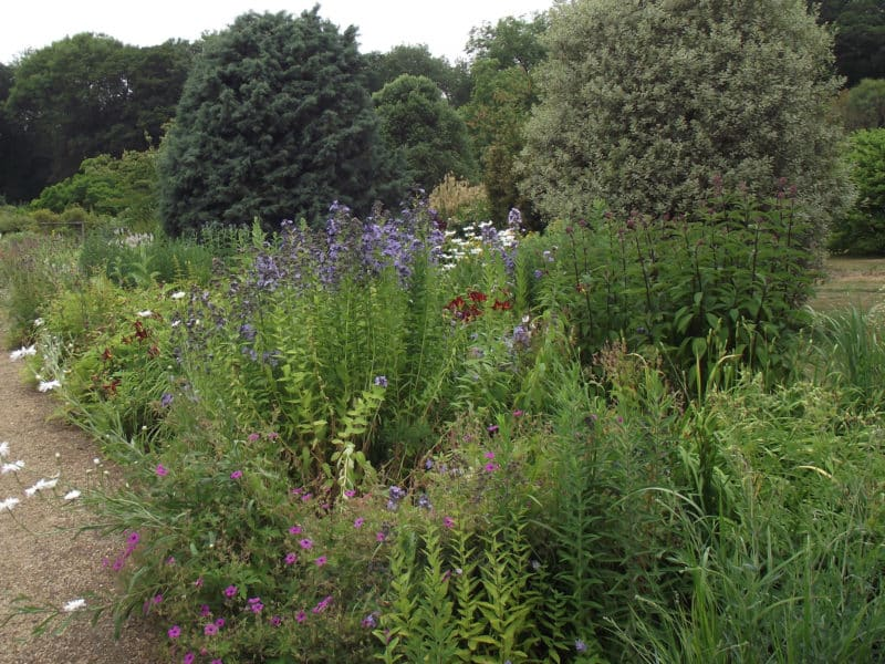 landscape design and planting in Norfolk