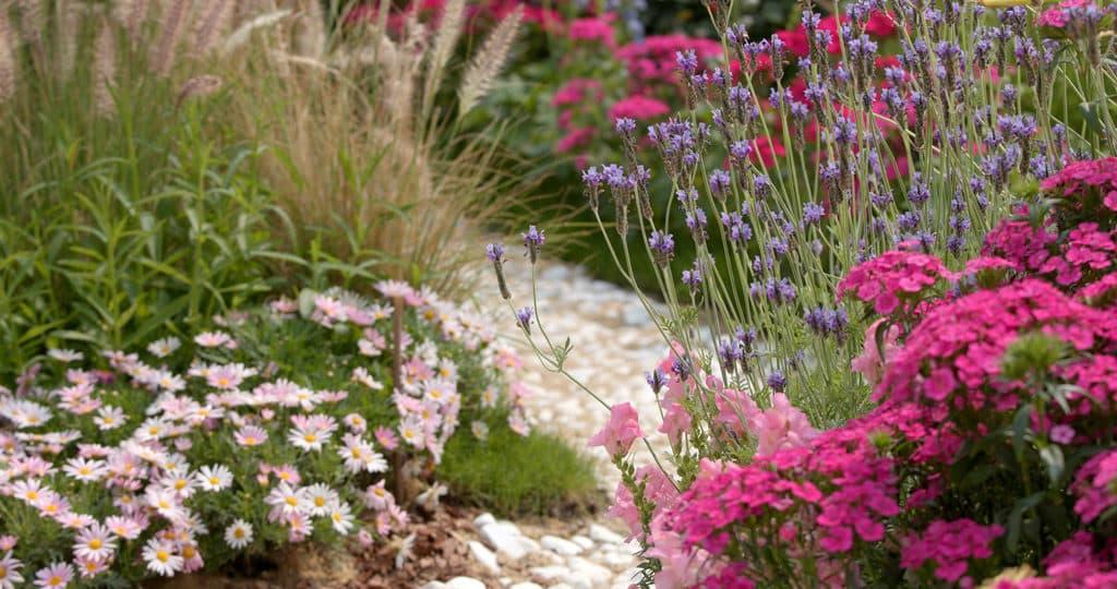 informal gravel garden