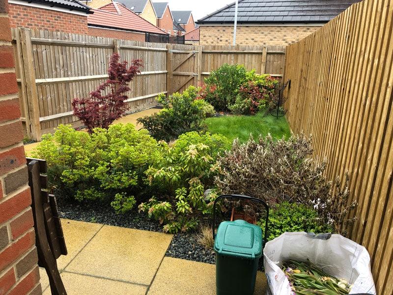 long narrow back garden with overgrown shrubs