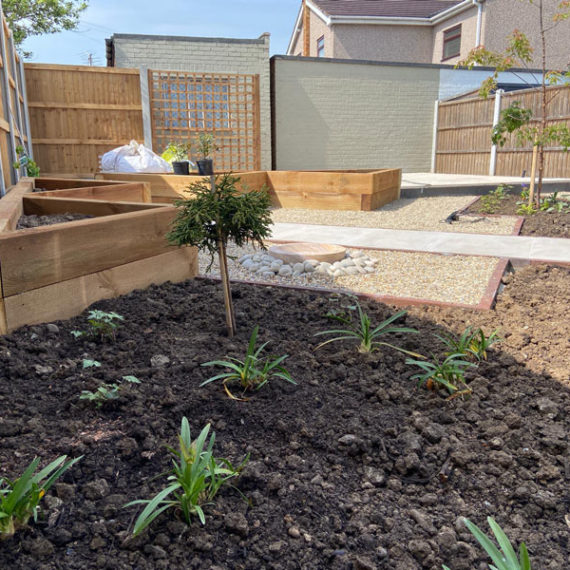 newly planted flower borders
