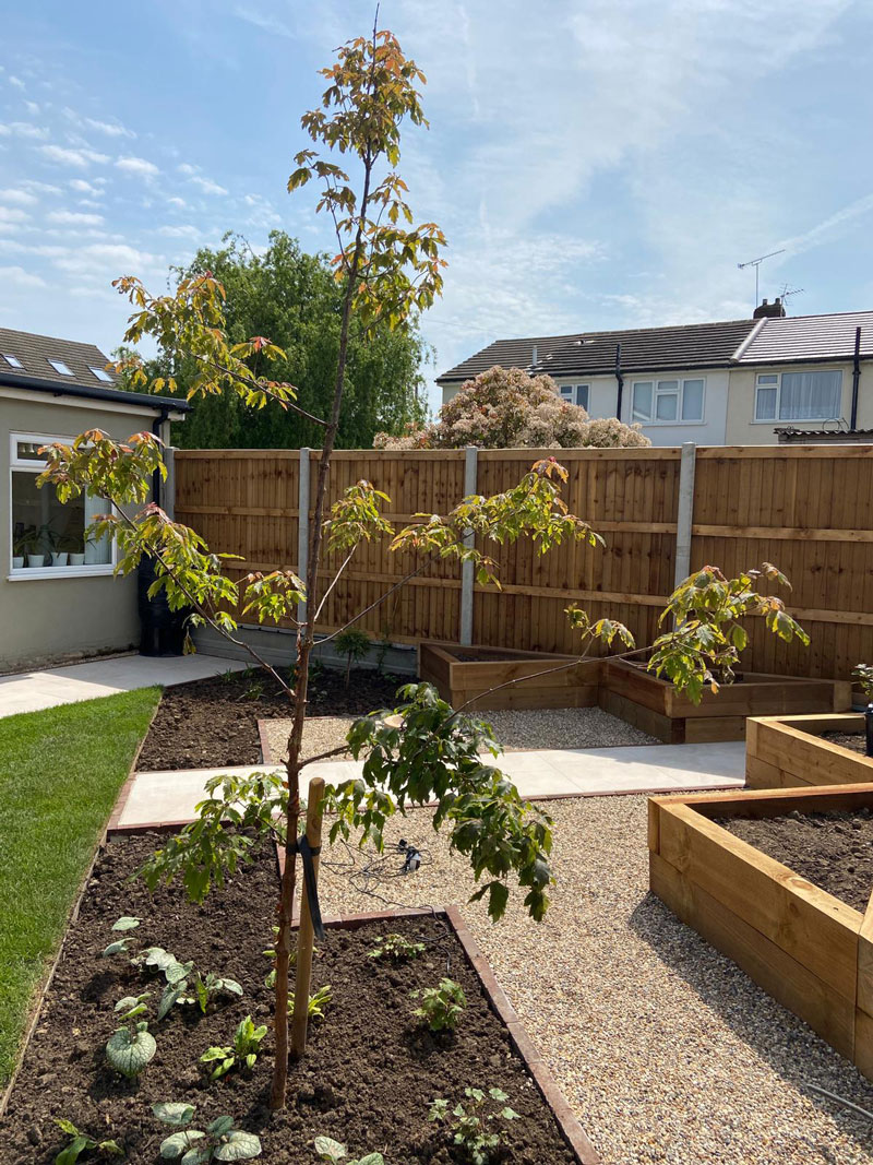 beautiful rear garden with young tree, lawn and raised sleeper beds